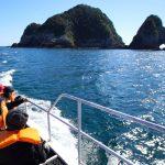 魚釣りのメッカ「枇榔島」(門川町)